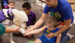 Gabriel's Angel Pet Therapy Dog