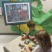 art appreciation in preschool